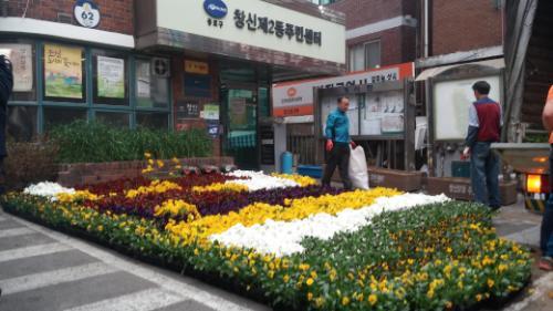 창신2동 봄 꽃