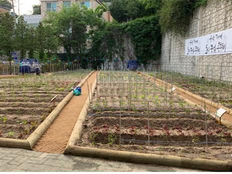 도시농업 활성화